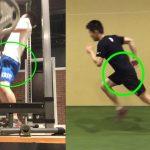 効率の良いランニングとウェイトトレーニングの共通点